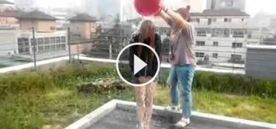AOA (澯美) 冰桶挑戰