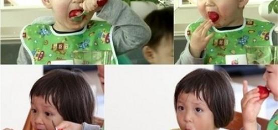 《超人回來了》民國與秋小愛展開吃貨對決:草莓爭奪戰