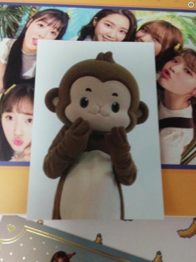 女團猴子造型再升級,耳朵尾巴變更大,粉絲留言經紀公司瘋了嗎?