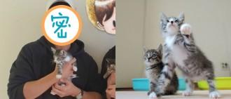 YouTuber尋有心人領養兩幼貓 認養人竟是他?!