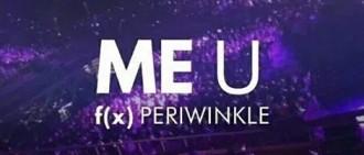 韓網友們探討6組2015新組合的歌迷名稱的含義