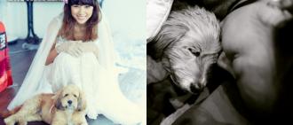 曾是出書寫歌主角 李孝利領養10年愛犬「順心」日前離世